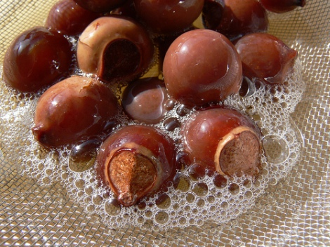 Soap Nuts For Natural Hair Wash